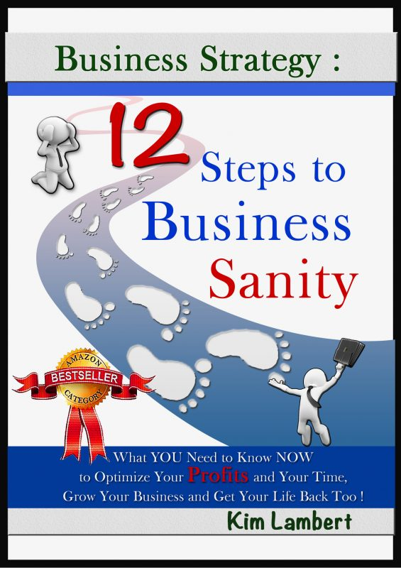 Business Strategy: 12 Steps to Business Sanity